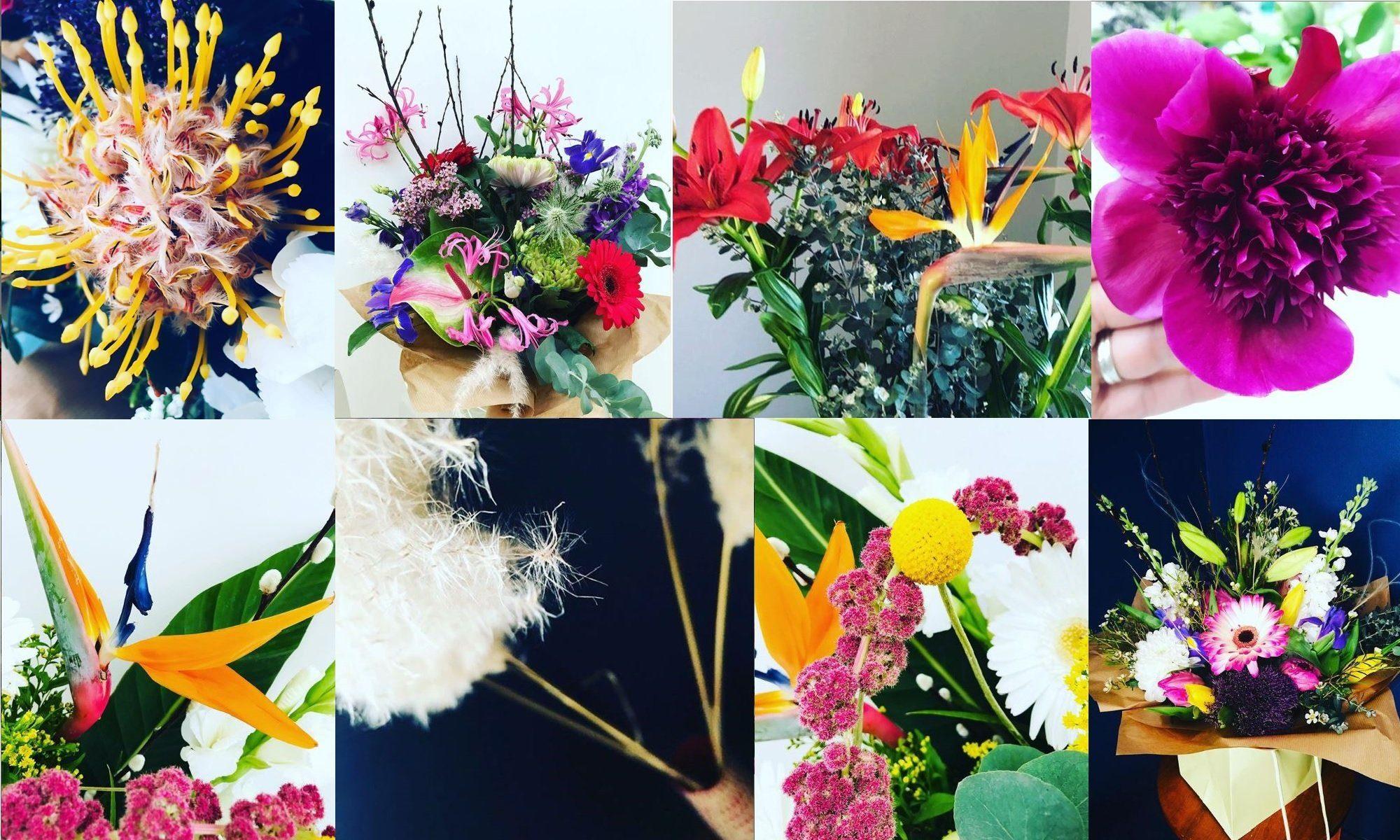 Flowers by sophia